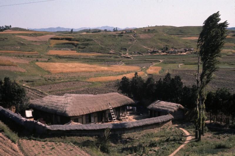 2 Korean farmhouse.jpg